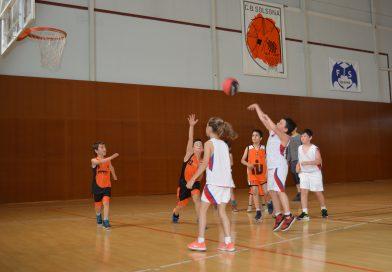 Imatges de la trobada d'Escoles de Bàsquet de la Catalunya Central el 27 de maig a Solsona